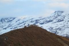 Dzongri-Top-view
